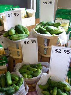 Picklin' Cucumbers - ready for picklin'
