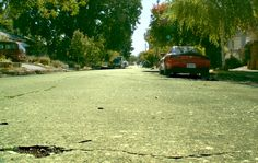 The back road from my house <3 #photography #skills #MAA #photo