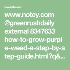 www.notey.com @greenrushdaily external 8347633 how-to-grow-purple-weed-a-step-by-step-guide.html?q=weed%20guide&utm_content=buffer3e195&utm_medium=social&utm_source=pinterest.com&utm_campaign=buffer