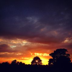 The sun sets behind a tree and the branches filter its burning brilliance which throws up a multi coloured curtain of orange and purple as a backdrop to the closing day. #sunset #dramatic #orange #purple #clouds #sky #beautiful #tree #silhouette #tumultuous #stormy #autumn #october #brilliant #dusk #night #landscape #bucolic #pastoral #view #scene #country #nature