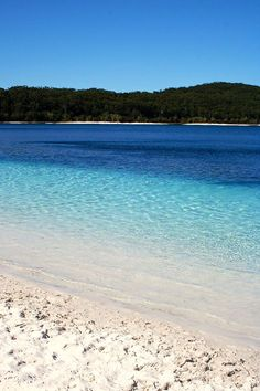 Lake McKenzie, Fraser Island, Australia - love this place! The sand that you see is pure white and some of the purest in the world. It is so fine that you can polish your jewellery in it, which I did. Sure did make my diamonds shine! Oh The Places You'll Go, Places To Travel, Places To Visit, Fraser Island Australia, Queensland Australia, Am Meer, Relax, Tasmania, Australia Travel