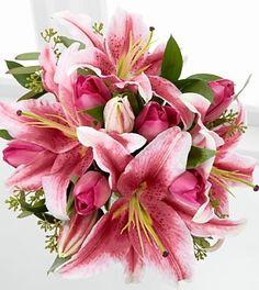 Stargazer Lilys are my most favorite flower, I love them<3 CD