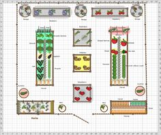 Raised bed garden designed by Oasis Backyard Farms