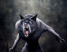 werewolf_roar.jpg (JPEG Image, 1252 × 973 pixels) The legend of the werewolf is one of the most ancient and wide spread. Stories of werewolves can be found as far back as history has been written. These shapeshifter myths can be found all over the word from China to Iceland and Brazil to Haiti. This humanoid creature of myth and folklore had the incredible ability to shapeshift. They are said to shift into the form of a wolf or a human-wolf-hybrid.