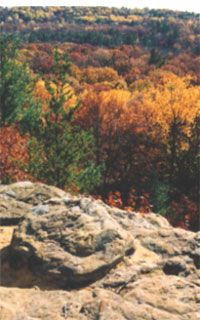 Wildcat Mound Park: Clark County, WI