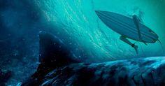 Recensione in anteprima di PARADISE BEACH - DENTRO L'INCUBO un sano terrore…