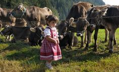 In #Trentino è in arrivo la #Desmalgada!Questo weekend in #ValdiRabbi Caserada e festa per grandi e piccini!