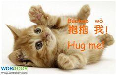 Wordoor Chinese - Hug me ! / 抱我!#Chinese #mandarin
