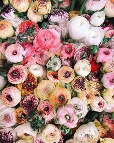 a bright bouquet.