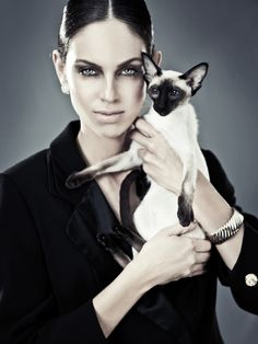 Our Gigi, a perfect siamese cat    #Salatino #ClubeSalatino #Gatil #love #Pets #Cute #lovepets #Siamese #Cattery