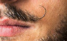 Dali's various mustache styles