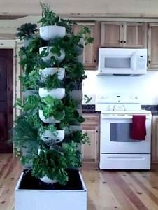 The Easiest, Most Efficient, High Yield, Indoor, Organic Food Growing System On the Planet!