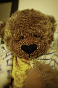 https://flic.kr/p/R1REk2 | Teddy's id picture..
