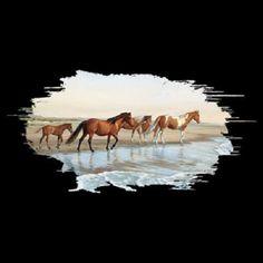 TSHIRT    Chincoteague Pony  Horse  T Shirt  by AlwaysInStitchesCo, $12.50