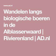 Wandelen langs biologische boeren in de Alblasserwaard | Rivierenland | AD.nl