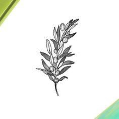 Olive branch for an amazing abuelita Olive Tattoo, Olive Branch Tattoo, Sketch Tattoo Design, Tattoo Designs, Black Tattoos, Small Tattoos, Saved Tattoo, Dibujos Tattoo, Kawaii Tattoo