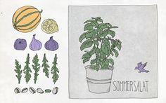 Agenturküche: Exotischer Sommersalat #Illustration #rezept #sommer