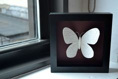 Framed Paper Butterfly - this is gorgeous, I want to make one.