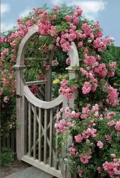 The garden gate I've always wanted!