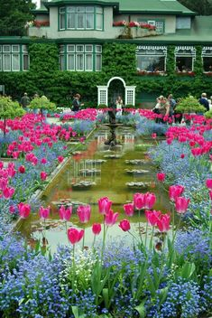 Butchart Gardens, Victoria, BC I've been here and all I can say is Go! The pictures don't even do it justice. Sign up for the tea, it's charming.