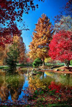 Gibbs Gardens, simply a beautiful place. 300 acres of beauty. Ballground, GA just north of Atlanta.