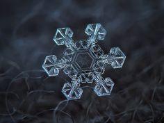 Snowflake 8, Foto: Alexey Kljatov