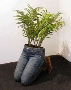 14 MindBlowing DIY Ideas With Old Jeans Turn To Unique Flower Planters is part of Garden - If you've been looking for a quaint and quirky way to make use of those old jeans you just can't wear any longer, we've come across a few brilliant projects