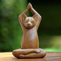 Gato haciendo yoga??