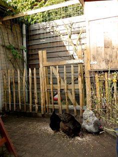 huis-tuin-en-keuken: C: Achterstallig onderhoud kippenren Farm Gardens, Garden Farm, Chicken Runs, Backyard Farming, Farm Life, Homesteading, Eco Friendly, Modern, Rabbit Ideas