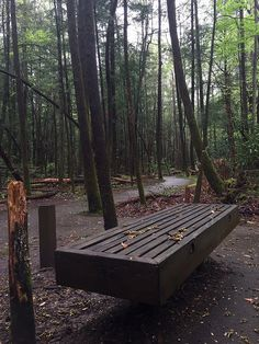 There are over 800 miles of hiking trails in the #SmokyMountains.