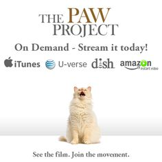 The #PawProject Movie is now available everywhere On Demand. Spread the word, and LIKE if you're watching this week!