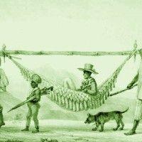 escravo-rede