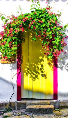 Bright and beautiful floral door in Paraty, Rio de Janeiro, Brazil.