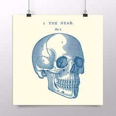 placa the head