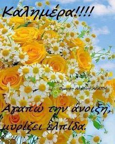 Good Morning Messages Friends, Night Pictures, Good Night, Emoji, Decoration, Spring, Nighty Night, Decor, The Emoji