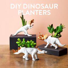 DIY Dinosaur succulent planters + more fun animal DIY projects.