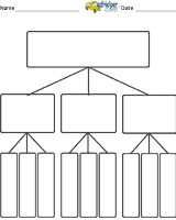 graphic organizer template tree 1000 images about graphic organizers