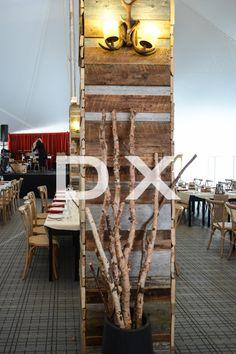 Black Vase with Birch Branches by DX Design