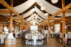 g&d_persian_bluemont_vineyard_wedding_007