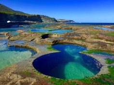 A Step-by-Step Guide to get to Sydney's Figure 8 Pools | Checkin-Out