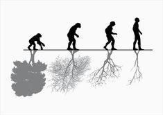 The evolution of man vs. nature