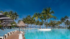 Reserve your stay at Le Méridien Noumea Resort & Spa, a beachfront hotel in New Caledonia with elegant accommodation, exquisite dining, a spa and more. Noumea New Caledonia, Holiday Resort, Marriott Hotels, Resort Spa, Hotel Offers, Swimming Pools, Beautiful Places, Places To Visit, Photos