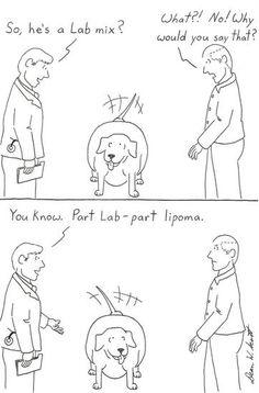 I probably laughed harder than I should have. Hehe