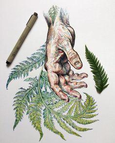 Striking Beauty of Flora & Fauna Illustrations by Noel Badges Pugh.|CutPasteStudio| Illustrations, Entertainment, beautiful,creativity, Art, Artwork, Artist, drawings, painting, nature.