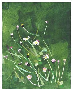 Daisy art print - Open edition