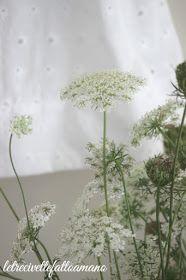 letrecivettefattoamano: Abitino per Francesca.. British Flowers, Queen Annes Lace, Deco Floral, Wild Flowers, Dandelion, Glass Vase, Bouquets, Plants, Insects