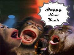 funny happy new year 2017 pics