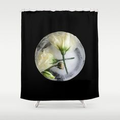 Frozen White Lisianthus Prairie Gentia on Black - Original Botanical Flora Digital Art Photography Shower Curtain Stop neglecting bathroom decor - our designer Shower Curtains bring a fresh new feel to an overlooked space. Hookless and extra long, these bathroom curtains feature crisp and colorful prints on the front, with a white reverse side. #showercurtains #amichy Digital Art Photography, Nature Photography, Frozen Rose, Create Image, Art Store, Bathroom Curtains, Shower Curtains, Home Decor Accessories, Flora