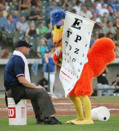 Time for an Eye Exam! Eye Care Center, Eye Center, Eye Jokes, Optometry Humor, Hump Day Humor, Eye Chart, Eye Exam, Vision Eye, Optician