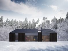 Claesson Koivisto Rune Debuts Gorgeous Daylit Tind Prefab Houses in Scandinavia